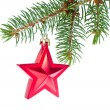 Red christmas star hanging from tree — Stock Photo #7656955