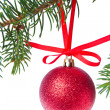 Red christmas ball hanging from tree — Stock Photo #7657079