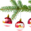 Red christmas ball on branch — Stock Photo #7657105