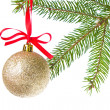 Christmas balls hanging from tree — Stock Photo #7657224
