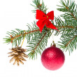Christmas ball on branch - Foto Stock