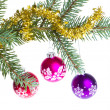 Christmas balls on spruce branch - Stock Photo