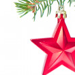 Red christmas star hanging from tree — Stock Photo