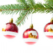 Red christmas ball on branch - Stock Photo