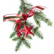 Decorated christmas branch - 图库照片