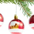 Red christmas ball on branch — Stock Photo