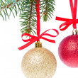 Christmas balls hanging from tree — Stock Photo #7657340