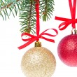 Stock Photo: Christmas balls hanging from tree