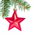 Red christmas star hanging from tree — Stock Photo #7657341