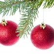 Stock Photo: Red christmas ball hanging from tree
