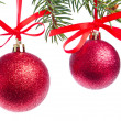 Red christmas ball hanging from tree — Stock Photo #7657365