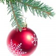 Ball hanging from spruce christmas tree — Stock Photo #7657377