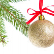 Christmas balls hanging from tree — Stock Photo #7657384