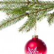 Red ball hanging from spruce christmas tree — Stock Photo #7657424