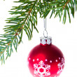 Christmas balls on spruce branch - Stockfoto