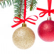 Christmas balls hanging from tree — Stock Photo #7657464