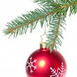 Ball hanging from spruce christmas tree — Stock Photo #7657570