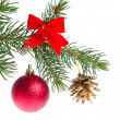 Christmas ball on branch - Stockfoto