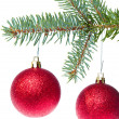 Red christmas ball hanging from tree - Stock Photo