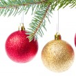 Red christmas ball hanging from tree - Stockfoto