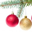 Red christmas ball hanging from tree — Stock Photo #7657978