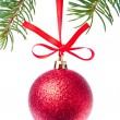 Red christmas ball hanging from tree — Stock Photo #7658007