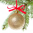 Christmas balls hanging from tree — Stock Photo #7658048