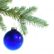 Stock Photo: Christmas ball on branch