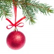 Red christmas ball hanging from tree — Stock Photo #7658200