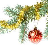 Decorated christmas branch — Stok fotoğraf