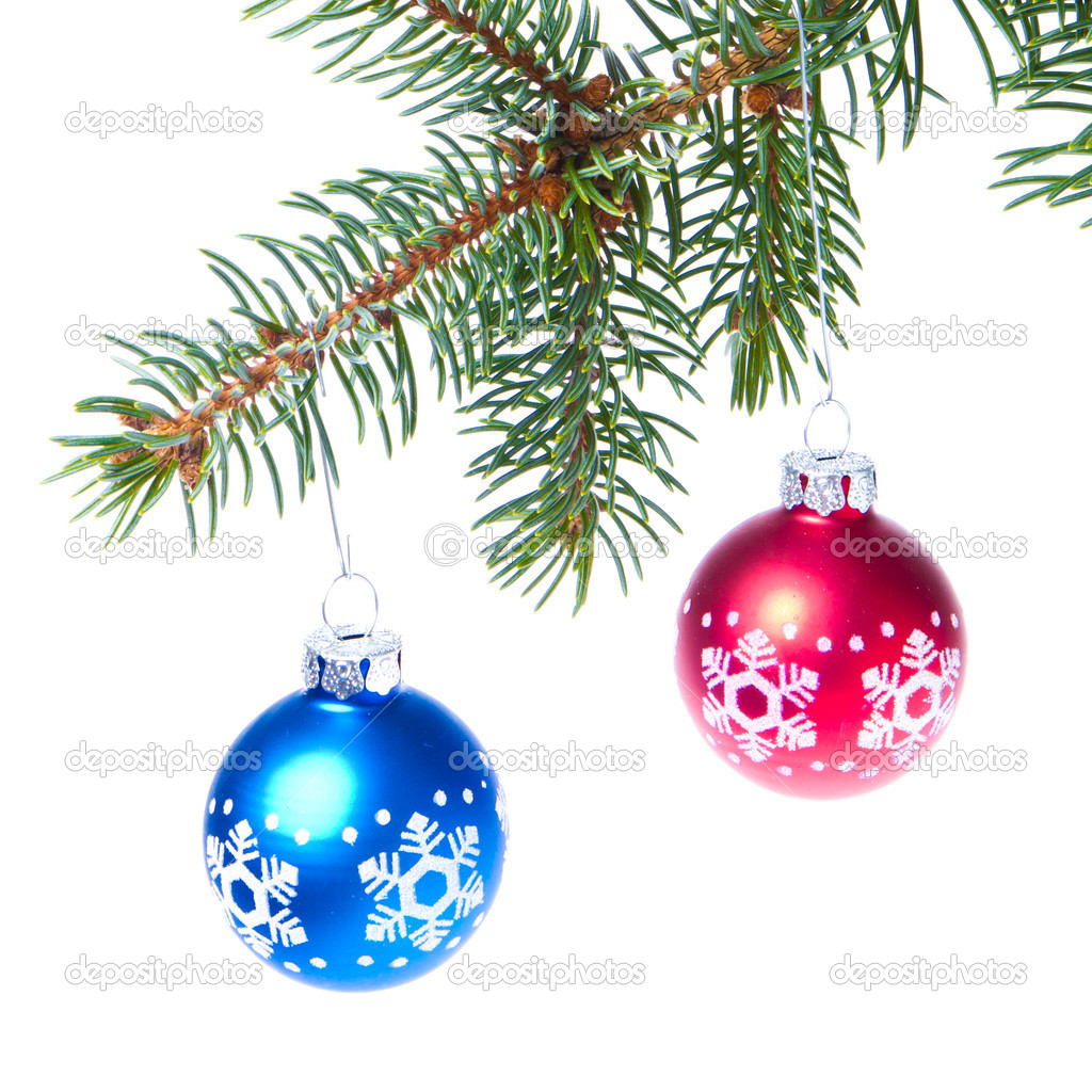 Blue christmas tree ball hanging from spruce isolated on white background — Stock Photo #7656461