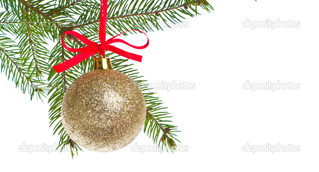 Christmas ball shanging from fir tree isolated on white background  Stock Photo #7656587