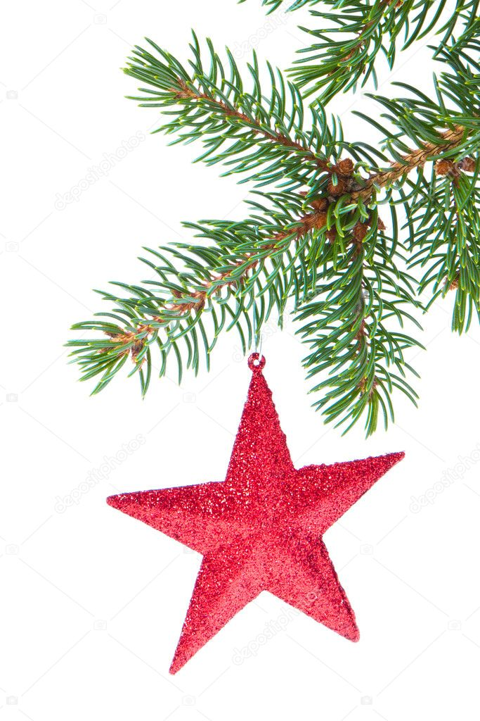 Red christmas star hanging from tree isolated on white background — Stock Photo #7657902