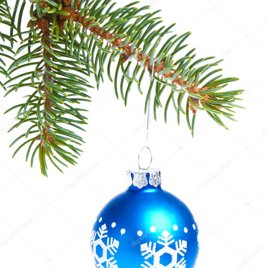Blue christmas tree ball hanging from spruce isolated on white background — Stock Photo #7657963