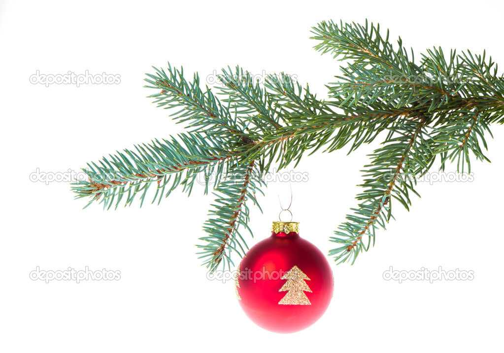 Christmas ball on branch isolated on white background  Stock Photo #7658118