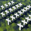 White crosses — Stock Photo
