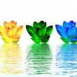 Lily flowers chakras — Stock Photo #7681514