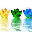 Lily flowers chakras - Stock Photo