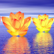 Lily flowers chakras by night — Stock Photo