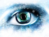 Winter eye — Stock Photo