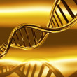 Royalty-Free Stock Photo: Golden DNA strands