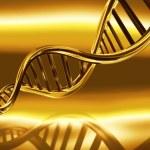 Golden DNA strands — Stock Photo #7498966