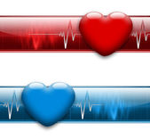 Electrocardiogram — Stock Photo