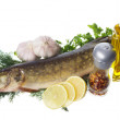Raw pike with cooking ingredients - Foto de Stock