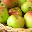 Apples from meadow orchard — Stock Photo