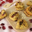 Oat flakes cookies with cranberries — Stock Photo