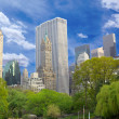 Central Park — Stock Photo #6987924