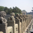 stone lion on the lugouqiao in beijing — Stock Photo