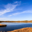 Lake and wetland at autumn — Stock Photo