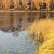 Lake scenery in autumn — Stock Photo